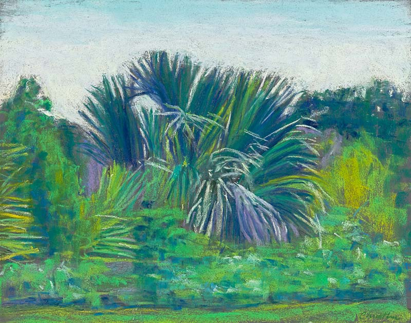© Christine Eckerfield-Palms, Simmons Park