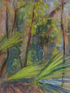 © Christine Eckerfield-Palms and Foliage