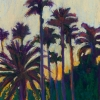 © Christine Eckerfield-St. Petersburg Palms at Sunset