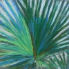 © Christine Eckerfield-Palm with Blue