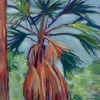 © Christine Eckerfield-Sabal Palm at Alderman\'s Ford
